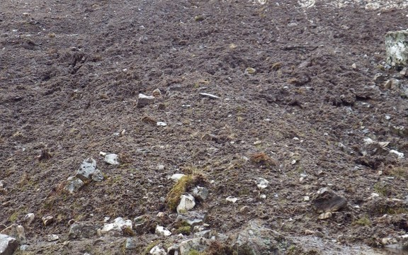 A trail of destruction left by the avalanche