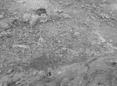 An exposed steep slab Western Slabs Dinas Mot Snowdonia