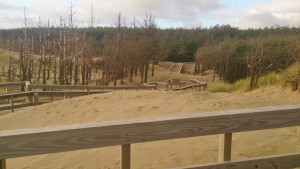 The sand can move very quickly in high winds