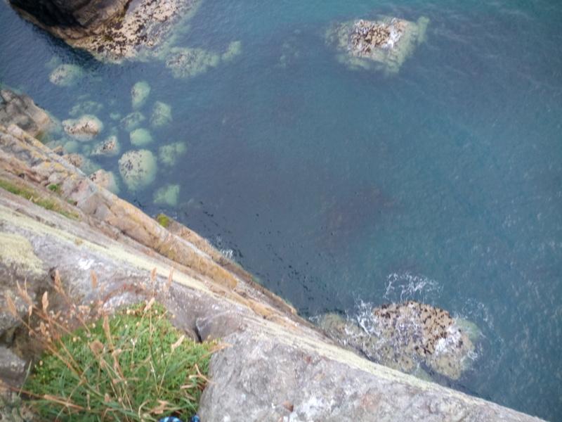 The vertical sea cliffs