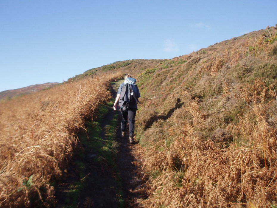 Beautiful lowland path to follow which need navigation skills if the weather comes in