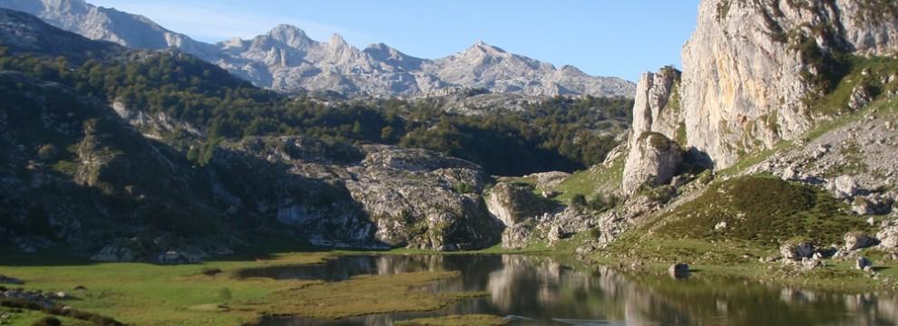 Lago Ercina, The Covadonga Lakes, Picos de Europa National Park