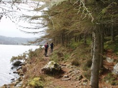 Lake and Woodland Walks - Snowdonia North Wales