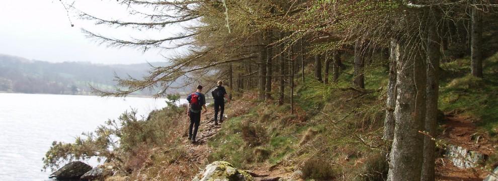 Lake and Woodland Walks - Snowdonia North Wales