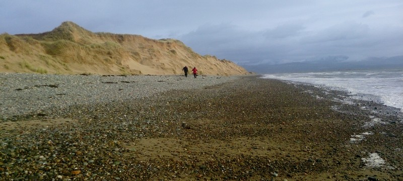 Anglesey coastal Path: The sand dunnes come all the way down to the sea